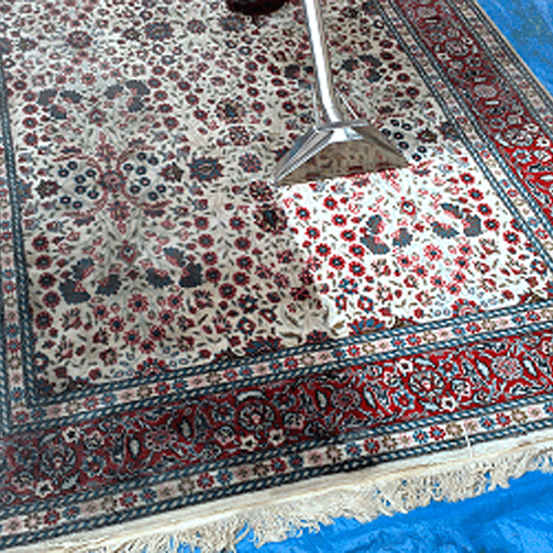 Area Rug Cleaning PSR