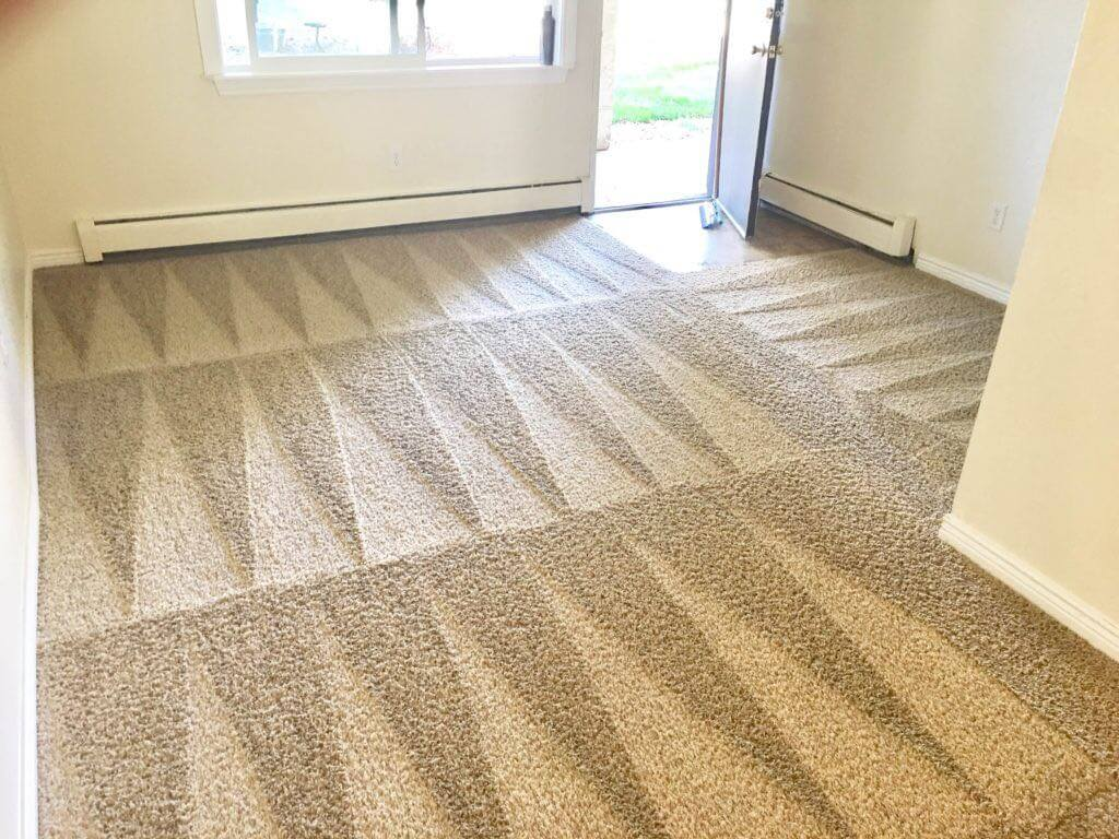 Carpet Cleaning Ft Lauderdale Psr Carpet Cleaning And